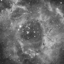 NGC2244,                                Samuli Vuorinen