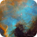NGC 7000 North America Nebula in Cygnus,                                Francois Theriault