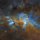 Statue of Liberty Nebula,                                Christian_Hilbert