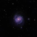 Messier 100,                                Steven Gill (Parkesburg Observatory)