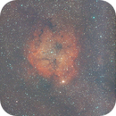 Ic 1396 - Asi 533 + Optolong Extreme - First Light,                                Stefano Ciapetti