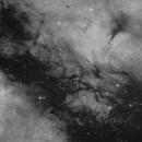 IC 1318 - pure Ha,                                Markus Blauensteiner