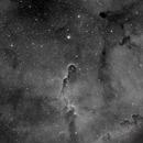 IC1396A Elephant Trunk,                                PVO