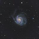 M101 Galaxy,                                Hojong Lin