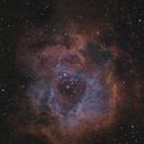 Rosette Nebula,                                Robert Huerbsch