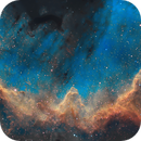 The Great Cygnus Wall - Close up - Hubble palette SHO,                                Patrice B