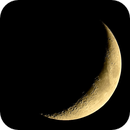 Waxing Crescent,                                Molly Wakeling