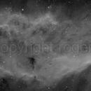 NGC1499,                                Roger Brooker