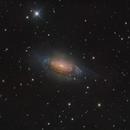 NGC 3521,                                Toshiya Arai