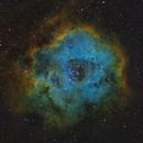 Rosettennebel SHO NGC2244,                                Alexander Voigt