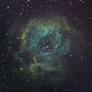 NCG2244 Rosette Nebula,                                sleparc