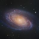 M81 Bode's Galaxy,                                Shannon Calvert