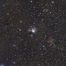 NGC7129,                                Jeff Donaldson