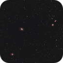 Messier 95  - 96 - 105 - Galaxies & Co - Leo Quintet,                                Ray Caro