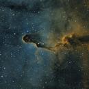 Elephant Trunk Nebula,                                Chad Quandt