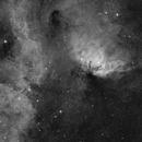 Sharpless 101 Tulip nebula,                                Ruben Jorksveld