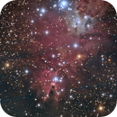 Cone Nebula,                                Matt Jenkins