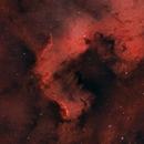 NGC 7000 - North America Nebula (Cygnus Wall),                                Cluster One Observatory