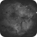 Elephant Trunk Nebula,                                Jimmy Eubanks
