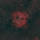 IC 1396,                                ManuelG.