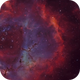 Rosette Nebula HOO,                                Firas Haki