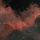 NGC 7000 - The Wall,                                Dale Penkala