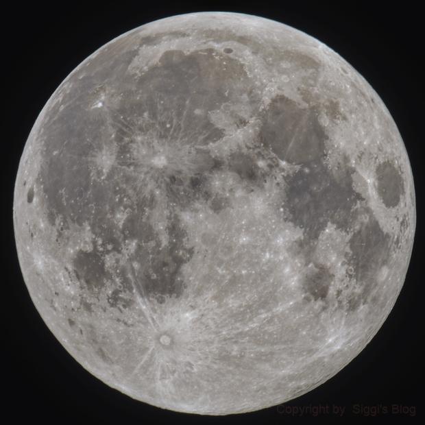 Full Moon,                                Siegfried