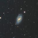 M109 - Vacuum Cleaner Galaxy,                                Tom H