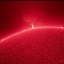 Sun May 5 2020,                                PapaMcEuin