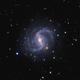 NGC 5921 GALAXY,                                AstroRiccione