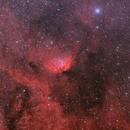 SH2-101 - Tulip Nebula - BiColor,                                Jonas Illner