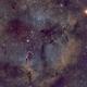 IC1396 SHO,                                Daniel Fournier
