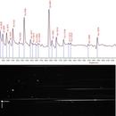 Spectral analysis of Nova Cas 2021 (V1405 Cas),                                Johannes D. Clausen