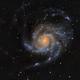 M101 - Pinwheel Galaxy,                                Michel Makhlouta