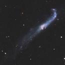 NGC4656 LRGB - The Hockey Club Galaxy,                                andrea tasselli