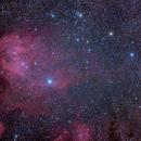 Lambda Centauri (Running Chicken) Nebula,                                Peter Pat