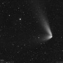 Comet C/2014 Q1 PANSTARRS (Aug.11,2015),                                José J. Chambó