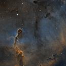 IC1396 Elephants's Trunk Nebula,                                zsolak