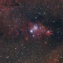 Cone Nebula, X-mas Tree cluster and Friends,                                Anurag Wasnik
