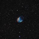 Sh2-274 /Abell 21 - The Medusa nebula in Gemini - SHO,                                Daniel.P