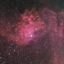 Flaming Star Nebula (IC405) in L (H-alpha) RGB,                                HaSeSky