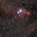 NGC 2264, Christmas Tree Cluster and Cone Nebula,                                danielchangcck