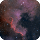 NGC 7000 North America Nebula,                                Colm O'Dwyer