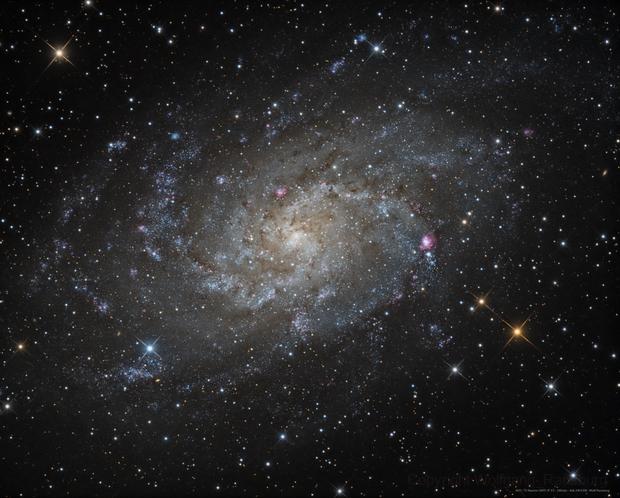M33 NGC598,                                Wolfgang Ransburg