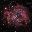 Rosette nebula,                                Yuriy Mazur