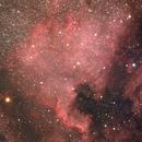 NGC 7000,                                Johann Schiffmann