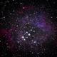 Rosette Nebula,                                otoskope