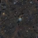 NGC 1333,                                mdohr