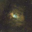 Bubble Nebula,                                Matt Freed