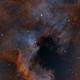 The North America Nebula, NGC 7000, narrowband tri-color,                                riot1013